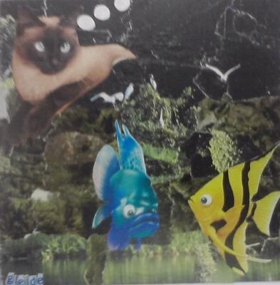 Oficinas Em Palmas   Tocantins 20110702 2052587168