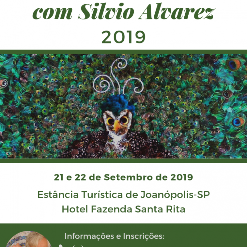 1 – Curso De Collage Com Silvio Alvarez (2)